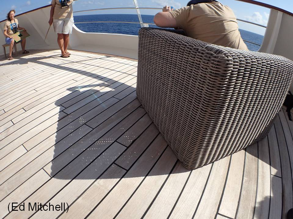 Image: Rattan chair creates crescents on deck